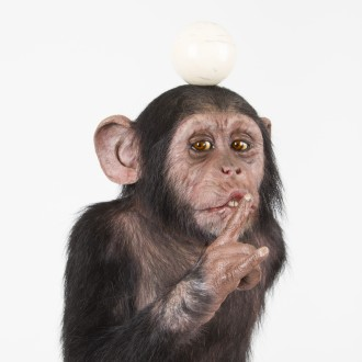 Monkey with Ivory ball on his head and his index finger in front of his mouth